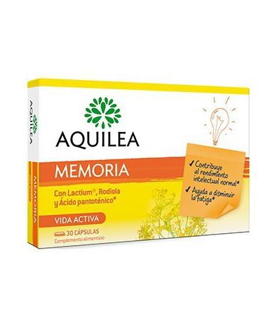 Aquilea Memoria Estudio 30...
